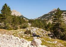 Paesaggio dell'alta montagna Fotografie Stock Libere da Diritti