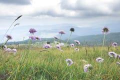 Paesaggio dell'alta montagna Cielo drammatico Fotografia Stock Libera da Diritti