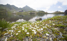Paesaggio dell'alta montagna con il lago del ghiacciaio Fotografia Stock Libera da Diritti