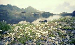 Paesaggio dell'alta montagna con il lago del ghiacciaio Fotografie Stock Libere da Diritti