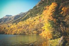 Paesaggio dell'alta montagna con il lago e di alto picco un chiaro giorno Fotografia Stock