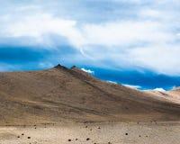 Paesaggio dell'alta montagna dell'Himalaya. L'India Immagini Stock Libere da Diritti