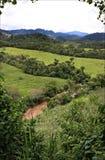 Paesaggio dell'America Centrale con pianta e cielo blu con le nuvole, Honduras Fotografia Stock