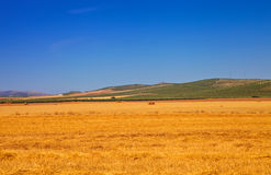 Paesaggio dell'Andalusia Fotografia Stock