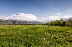 Paesaggio dell'Asia. Il Kirghizistan, Baitik Fotografia Stock