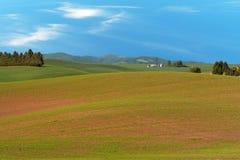 Paesaggio dell'azienda agricola Immagine Stock
