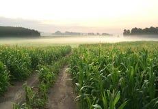 Paesaggio dell'azienda agricola Fotografie Stock Libere da Diritti