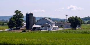 Paesaggio A dell'azienda agricola di Amish fotografia stock libera da diritti