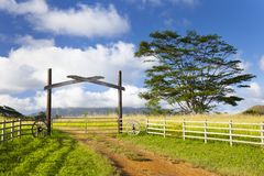 Paesaggio dell'azienda agricola di Kauai, Hawai Fotografia Stock Libera da Diritti