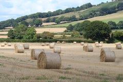 Paesaggio dell'azienda agricola nella fine dell'estate Fotografia Stock Libera da Diritti