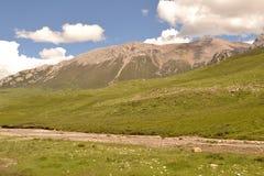 Paesaggio dell'erba e della montagna Fotografie Stock