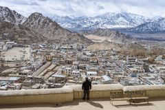 Paesaggio dell'Himalaya di Leh Ladahk India immagine stock libera da diritti