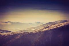 Paesaggio dell'inverno stupefacente di sera in montagne Immagini Stock