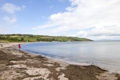 Paesaggio dell'Irlanda Immagini Stock