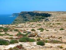 Paesaggio dell'isola con poche piante di vegetazione Mediterranea immagine stock libera da diritti