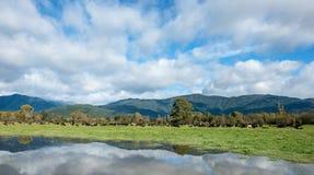 Paesaggio dell'isola del sud, Nuova Zelanda Immagine Stock