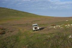 Paesaggio dell'isola della carcassa nelle Malvinas Fotografia Stock Libera da Diritti