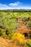 Paesaggio dell'isola di Ibiza con i campi di agricoltura Fotografia Stock Libera da Diritti
