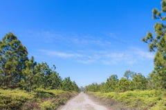 Paesaggio dell'itinerario Fotografia Stock