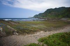 Paesaggio dell'oceano Immagini Stock