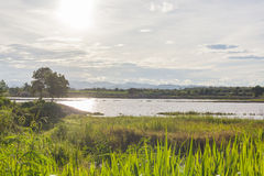 Paesaggio della campagna con estate della palude e mountian im fotografia stock