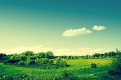 Paesaggio della campagna con i campi verdi Fotografia Stock