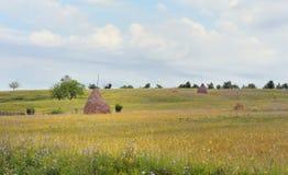 Paesaggio della campagna con il mucchio di fieno Immagine Stock