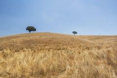 Paesaggio della campagna dell'Alentejo fotografie stock