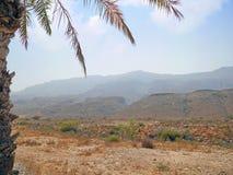 Paesaggio della campagna dell'Oman Fotografie Stock