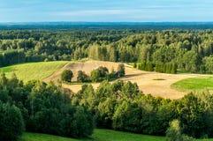 Paesaggio della campagna delle foreste verdi Immagini Stock
