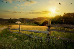 Paesaggio della campagna di arte; campo rurale del terreno coltivabile e dell'azienda agricola fotografia stock