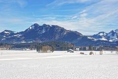 Paesaggio della campagna nevosa in Svizzera nell'inverno Fotografia Stock Libera da Diritti