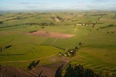 Paesaggio della canna da zucchero dell'aria Fotografia Stock Libera da Diritti