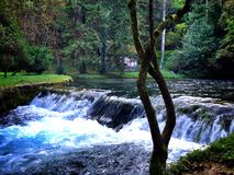 Paesaggio della cascata Fotografie Stock