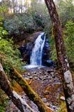 Paesaggio della cascata immagini stock