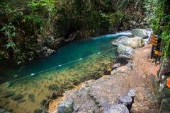 Paesaggio della cascata naturale in Tailandia fotografia stock