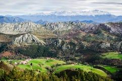 Paesaggio della catena montuosa di Picos de Europa con un campo verde nella parte anteriore e nelle montagne coperte da neve all' immagine stock libera da diritti