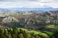 Paesaggio della catena montuosa di Picos de Europa con un campo verde nella parte anteriore e nelle montagne coperte da neve all' immagini stock