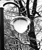 Paesaggio della città di inverno con la lampada di via Immagine Stock Libera da Diritti