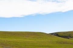 Paesaggio della collina dell'erba verde Immagine Stock