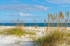 Paesaggio della costa di golfo Immagini Stock Libere da Diritti