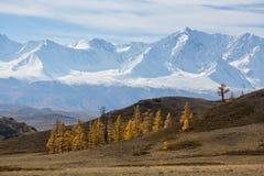 Paesaggio della cresta di Chuyskiy alle montagne di Altai Repubblica di Altai Fotografia Stock