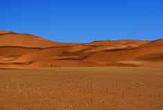 Paesaggio della duna Fotografia Stock