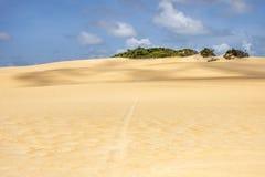 Paesaggio della duna in città natale nel Brasile immagine stock libera da diritti