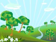 Paesaggio della foresta Immagine Stock