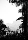 Paesaggio della foresta di fondo tropicale royalty illustrazione gratis