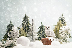 Paesaggio della foresta di inverno Immagine Stock
