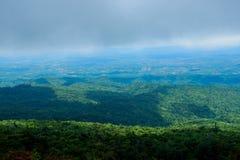 Paesaggio della foresta della montagna di Forest Green Paesaggio fantastico della foresta della foresta della montagna nebbiosa fotografie stock