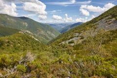 Paesaggio della foresta della valle della quercia in Asturie Parco naturale di Muniellos fotografia stock