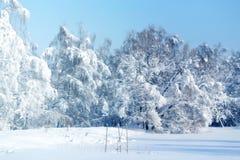 Paesaggio della foto di inverno Immagini Stock Libere da Diritti